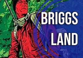 BRIGGS LAND